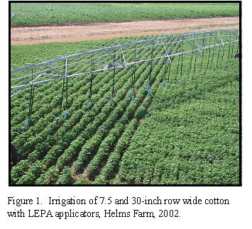 Figure 1. Irrigation of 7.5 and 30-inch row wide cotton with LEPA applicators, Helms Farm, 2002.