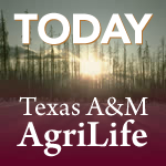 MEDIA ADVISORY:  New Texas A&M AgriLife Robotic greenhouse set for construction